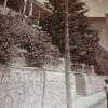 Алупка (г. Алупка, возле Воронцовского парка)