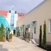 Встреча ( г. Саки, возле побережья Черного моря )