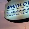 Васильевский остров | Санкт-Петербург | Академический сад | Библиотека