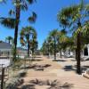 DEL MAR | Пицунда | пляж 1-я линия