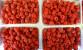 Pogostite.ru - Дачный сезон. Осень 2018 – урожайная выставка в Ростове-на-Дону