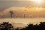 Выставка Криоген-Экспо. Промышленные газы 2019 пройдет 17-19 сентября в Экспоцентре
