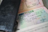 Pogostite.ru - В Госдуму представлен проект об электронных визах