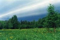 Pogostite.ru - Подвесная туристическая тропа появилась в Висимском заповеднике