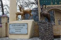 Pogostite.ru - Центр для гостей открылся в Тебердинском заповеднике