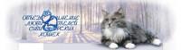 Pogostite.ru - Выставка Кошек «Юбилейная весна – 2017» c 01 по 02 апреля КВЦ