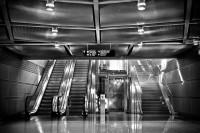 Pogostite.ru - Выставка подъемной техники «Russian Elevator Week 2019» пройдет 26-28 июня на ВДНХ