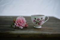 Pogostite.ru - Выставка Moscow Coffee & Tea Expo 2019 состоится 7-10 октября в МВЦ Крокус Экспо