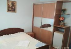 АРГО (в центре, есть кухня) Двухместный номер с 1 кроватью
