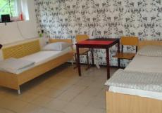 Griboedov Guesthouse |Грибоедов Гвестхаус | Нижний Тагил | Центр города | Бюджетный трехместный номер