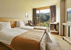 Rooms Hotel Kazbegi | Румс Готель | Казбеги | река Терек | конференц-зал | Стандартный двухместный номер с 2 отдельными кроватями и видом на лес
