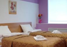 Краски лета | г. м. Технологический Институт | Wi-Fi Стандарт двухместный (2 односпальные кровати)