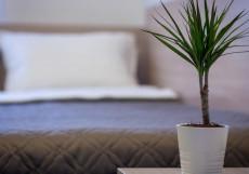 Арбат Инн | Arbat Inn | м. Смоленская | Wi-Fi Бюджетный двухместный номер с 1 кроватью