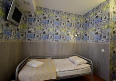 Петрополь   СПБ   м. Площадь Восстания   Wi-Fi Двухместный номер с 2 отдельными кроватями и ванной комнатой