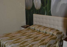 Академия   Гостинично - ресторанный комплекс   Курган Люкс с гидромассажной ванной