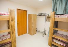 Тортуга | Tortuga | Тюмень | Wi-Fi Кровать в общем 8-местном номере