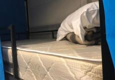 I Like City (ЮВАО, недорого жилье) Односпальная кровать в общем номере для женщин