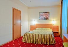 Золотой Колос Стандартный двухместный номер с 1 кроватью