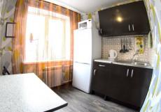 Приват-отель (г. Новокузнецк, Проспект Дружбы, 38) 2-местная Квартира 1-комнатная