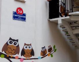Owl and Owl | Vladivostok | Square name Semenova.