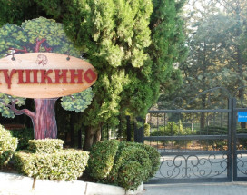 Санаторий Пушкино