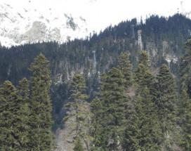 Сокол | Домбай | р. Аманауз | Катание на лыжах |