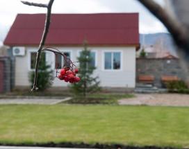 Апарт-отель на Березовой | Поселок Зеленая поляна | озеро Банное | Сауна