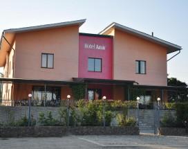 Amir Hotel | Каракол | р. Каракол | Бильярд |