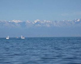 Meerim Murok | Чолпон-Ата | озеро Иссык-Куль | Бильярд