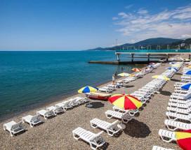 Арт | Хоста | Черное море | парковка