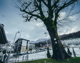 Альпика | Эсто-садок | WI-Fi