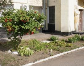 Папирус | Волгодонск | Парковка