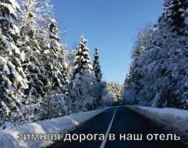 Александрия - Домодедово