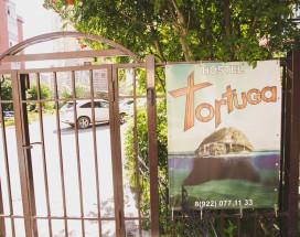 Тортуга | Tortuga | Тюмень | Wi-Fi