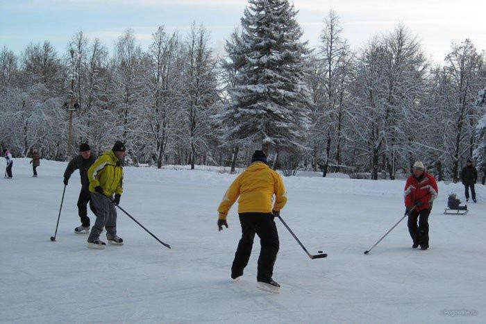 Pogostite.ru - СОЛНЕЧНАЯ ПОЛЯНА | ПОДМОСКОВЬЕ | катание | горнолыжная трасса | покататься | хоккей #5