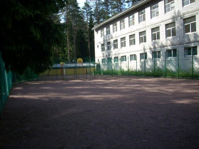 Pogostite.ru - Лесной воздух (г. Всеволожск) #1