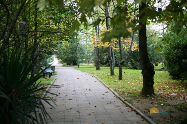Pogostite.ru - БУРГАС пансионат (город Адлер) #5