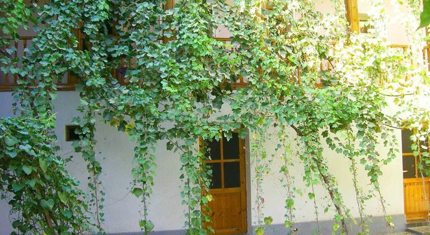 Pogostite.ru - ДЖАХОНГИР - Jahongir B&B | г. Самарканд | Центр | бесплатный Wi-Fi #3