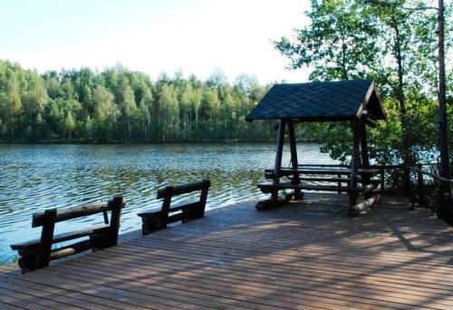 Pogostite.ru - ПАРК ОТЕЛЬ СДЛ | озеро Сиг | д. Петриково | коттеджи | бани #6