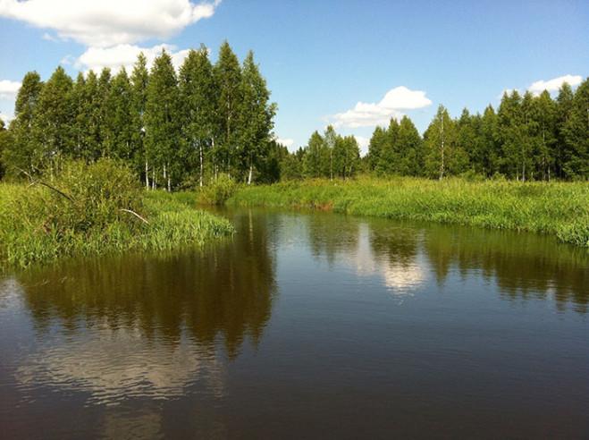 Pogostite.ru - ФЛАГМАН | Рузский р-н | Озернинское водохранилище | пляж #22