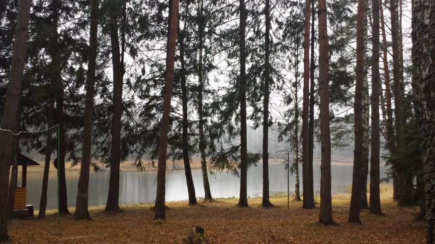 Pogostite.ru - ФЛОРА ПАРК - БАЗА ОТДЫХА | Пятницкое шоссе | истринское водохранилище | пляж | мангалы #11