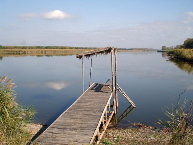 Pogostite.ru - ЮЖНОЕ ГРАФСТВО | На берегу реки, хутор Новый | С теннисным кортом #31
