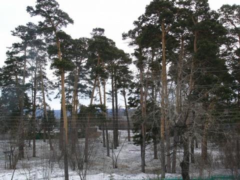 Pogostite.ru - Эдем (г.Братск) #7