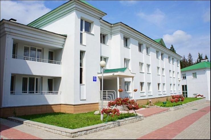 Pogostite.ru - КРАСНАЯ ГВОЗДИКА БАЗА ОТДЫХА | Истринский район, с ТИМБИЛДИНГОМ #2