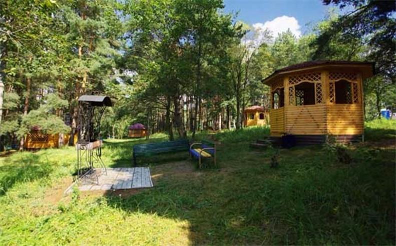 Pogostite.ru - СОЛНЕЧНЫЙ ПАНСИОНАТ | г. Звенигород, с Беседками для барбекю и бассейном #36