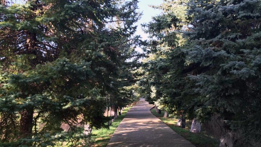 Pogostite.ru - АКВАРЕЛЬ ГОСТЕВОЙ ДОМ (г. Сочи, п. Дагомыс) #26
