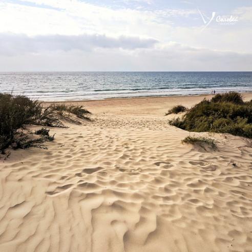 Pogostite.ru - Соловей Пансионат (cобственный песочный пляж | детская площадка) #23