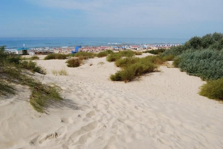Pogostite.ru - ВЕСНА БАЗА ОТДЫХА | п. Джемете | Пляж собственный с шезлонгами | автостоянка #44