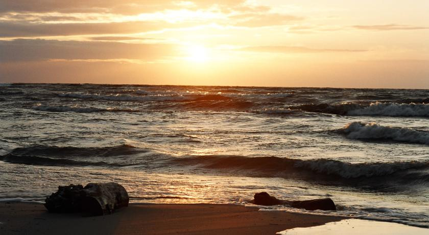 Pogostite.ru - Русь | Светлогорск | возле высокого берега Балтийского моря | бизнес-центр | #37