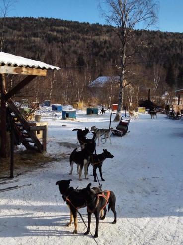 Pogostite.ru - Байкальские Терема - Baikal Hill Club | Листвянка #45